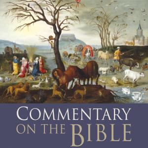 MP3 Bible Audio